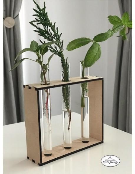 Vaza cu eprubeta si cadru din lemn